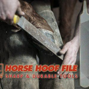 Horse Hoof Files